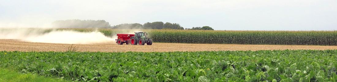 Rosenhof-Marketing - 3 Gründe, warum Ihr Landwirtschaftsbetrieb eine Internetseite braucht