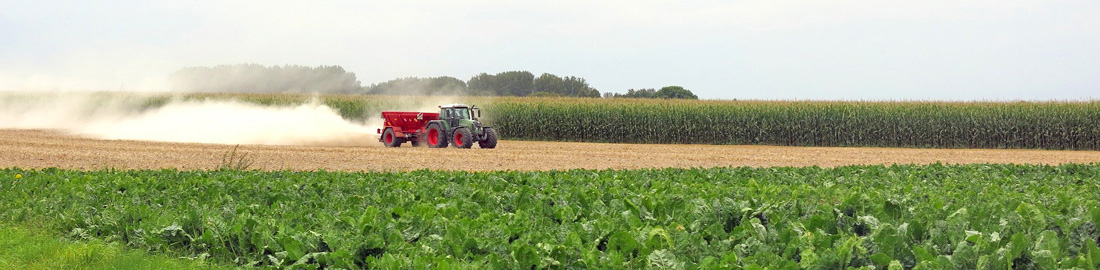 4 Gründe, warum Ihr Landwirtschaftsbetrieb eine eigene Website braucht